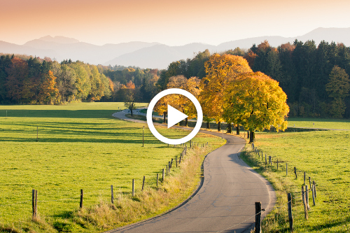 Winding Country Road through autumnal Landscape, vivid colored Maple Trees, Mountains in Background